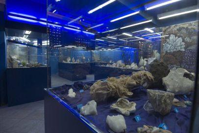 the-nautilos-museum-in-edipsos