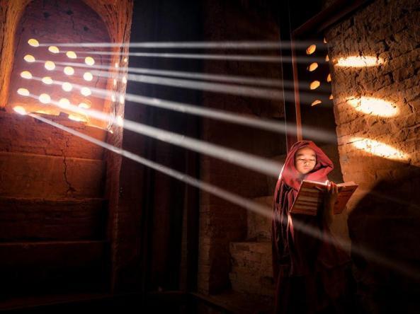 Burmese Rays myanmar