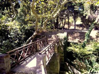 Rodinipark5