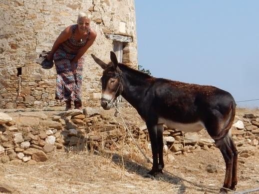 summer naxos 17 593
