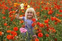 Carlsbad Flower Fields, Child in Ranunculus Field-L