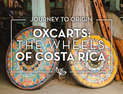 costa-rica-oxcart-main