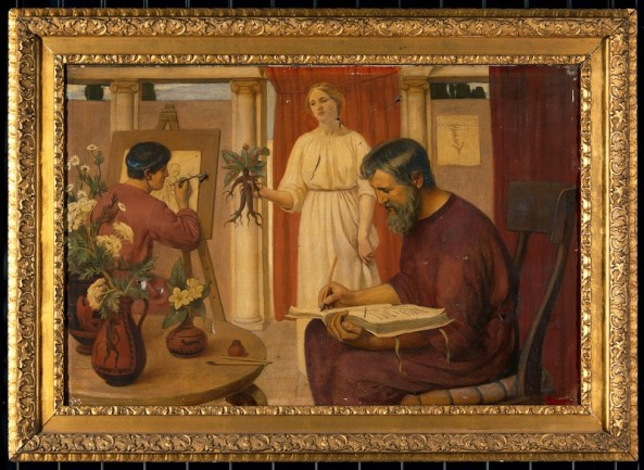 Ernest-Board-Dioscorides-describing-the-mandrake-1909